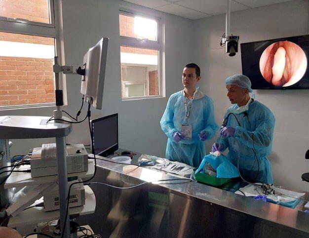 Cirugia endoscópica nososinusal